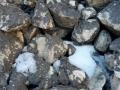 11- Piccole formazioni di talpe glaciali