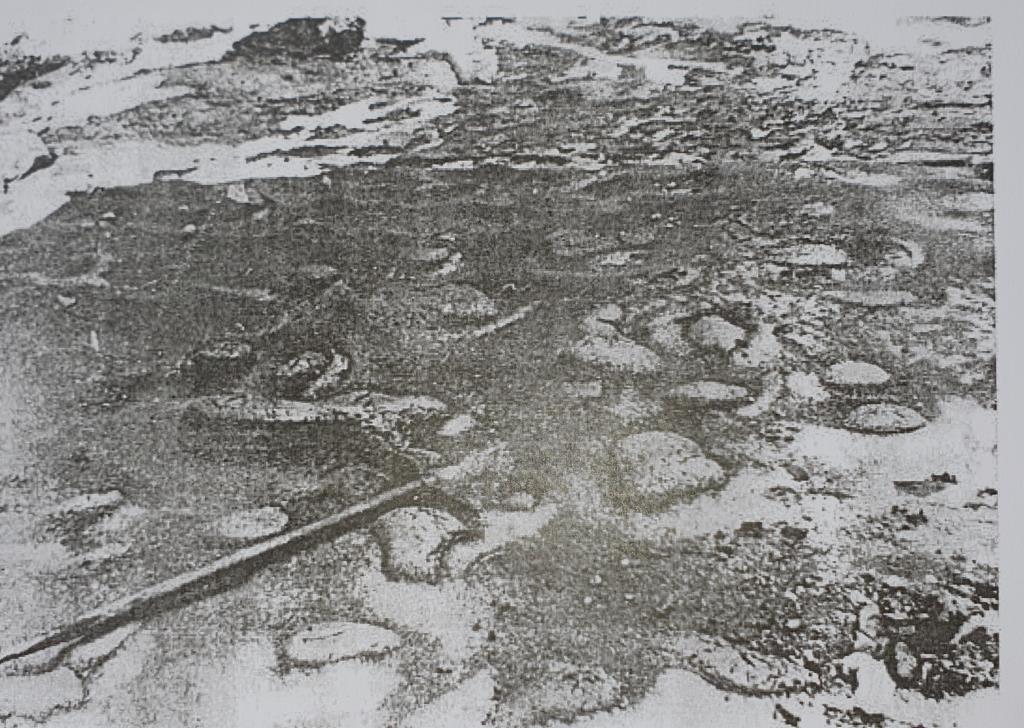 Laghetto Sofia 1951 talpe glaciali foto Tonini