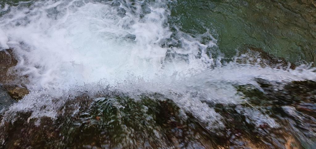 L'ultimo salto del torrente del Chiarino prima di immettersi nel Lago di Provvidenza 20191130_134426