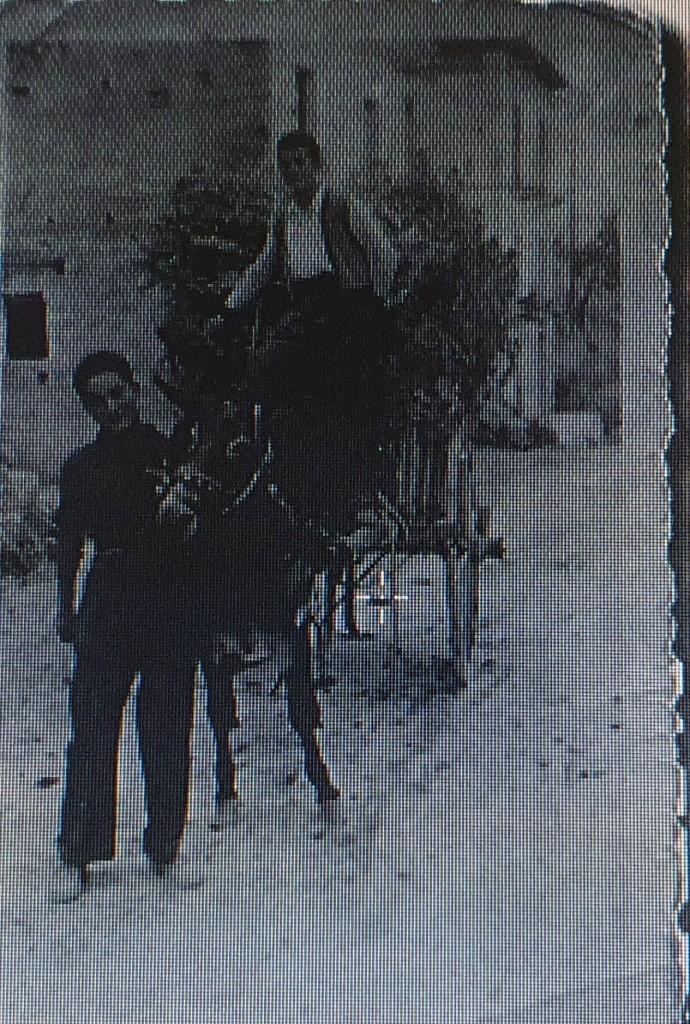 L'asino e il carretto